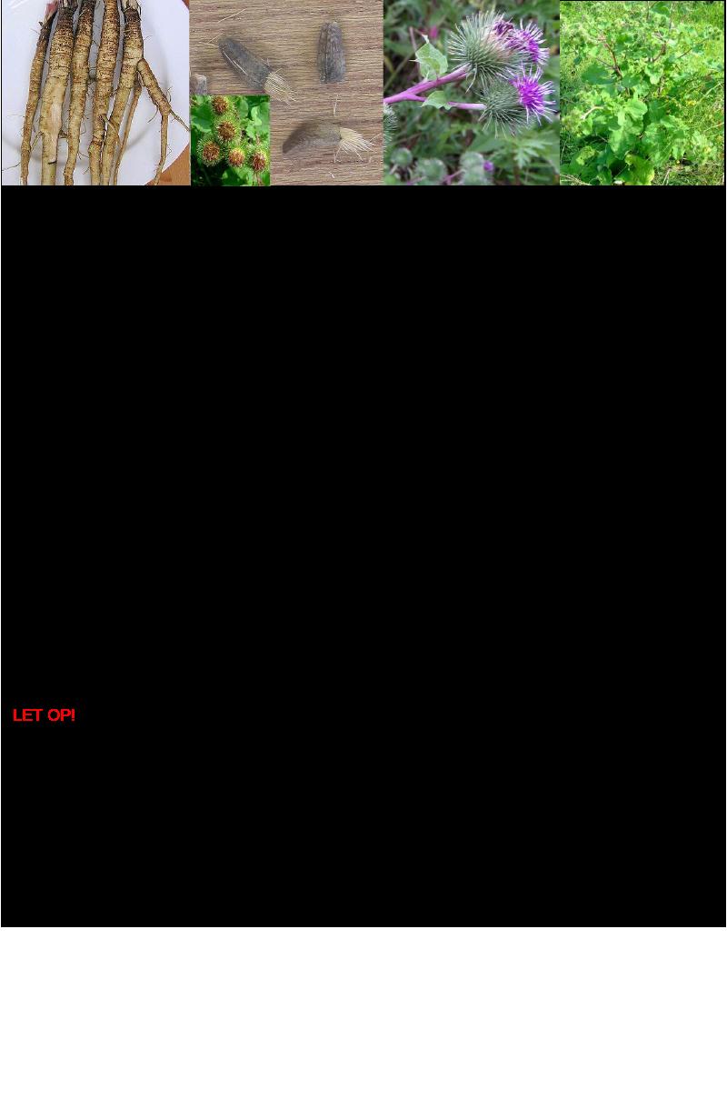 Grote klis-grote klit.rev.LL.2016.vs1a